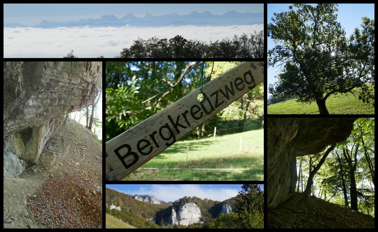 Bergkreuzweg