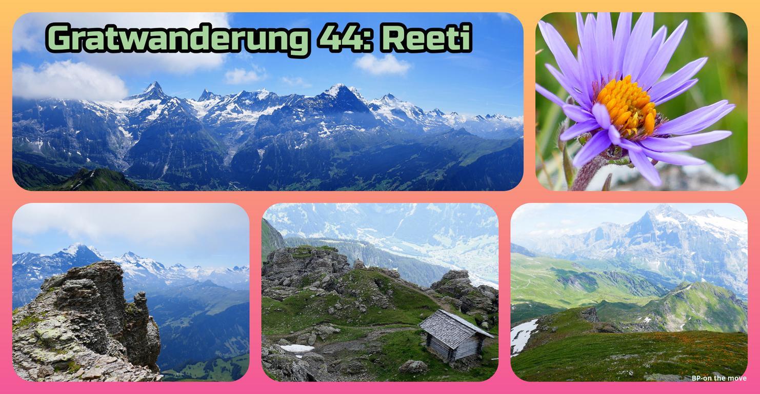 Gratwanderung 44_ Reeti