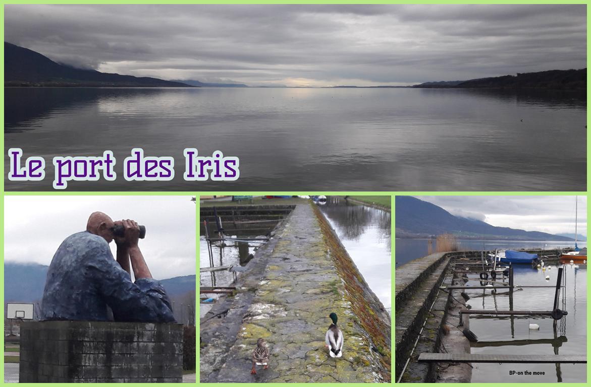 Le port des Iris