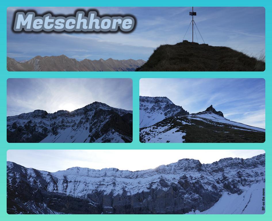 Metschhore