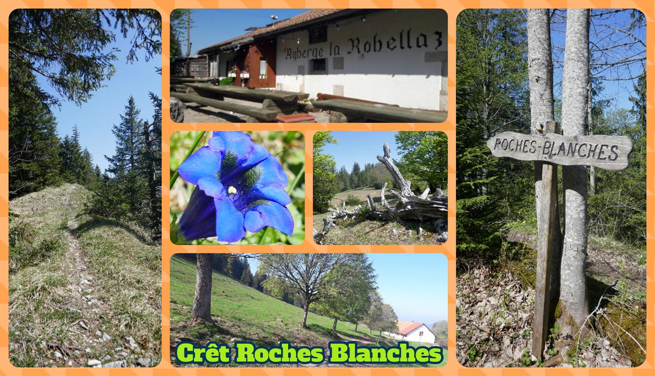 Roches Blanches(1)