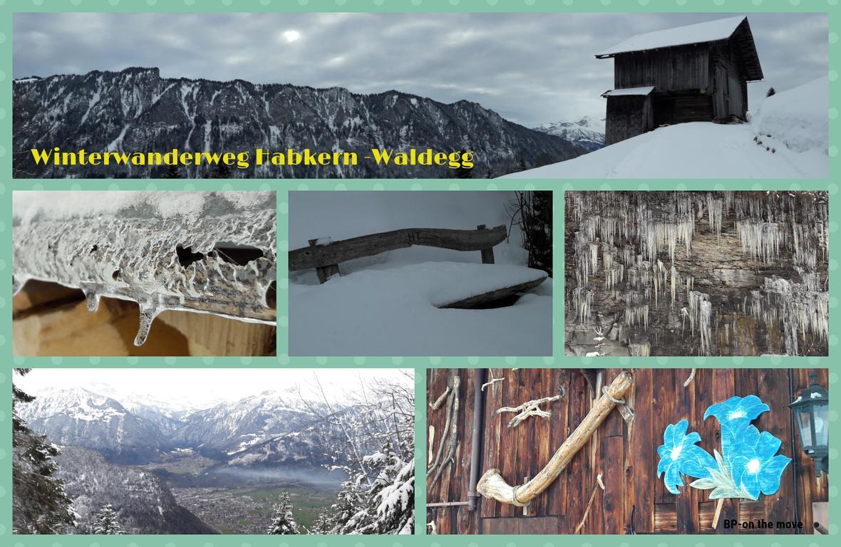 Winterwanderweg Habkern -Waldegg