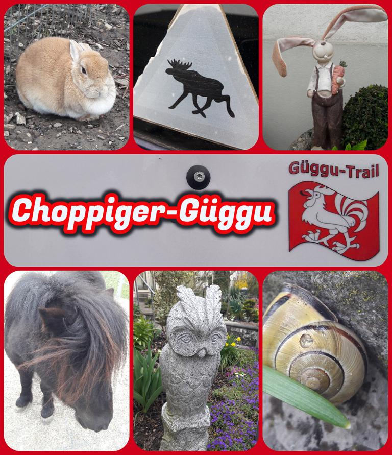 Choppiger-Güggu