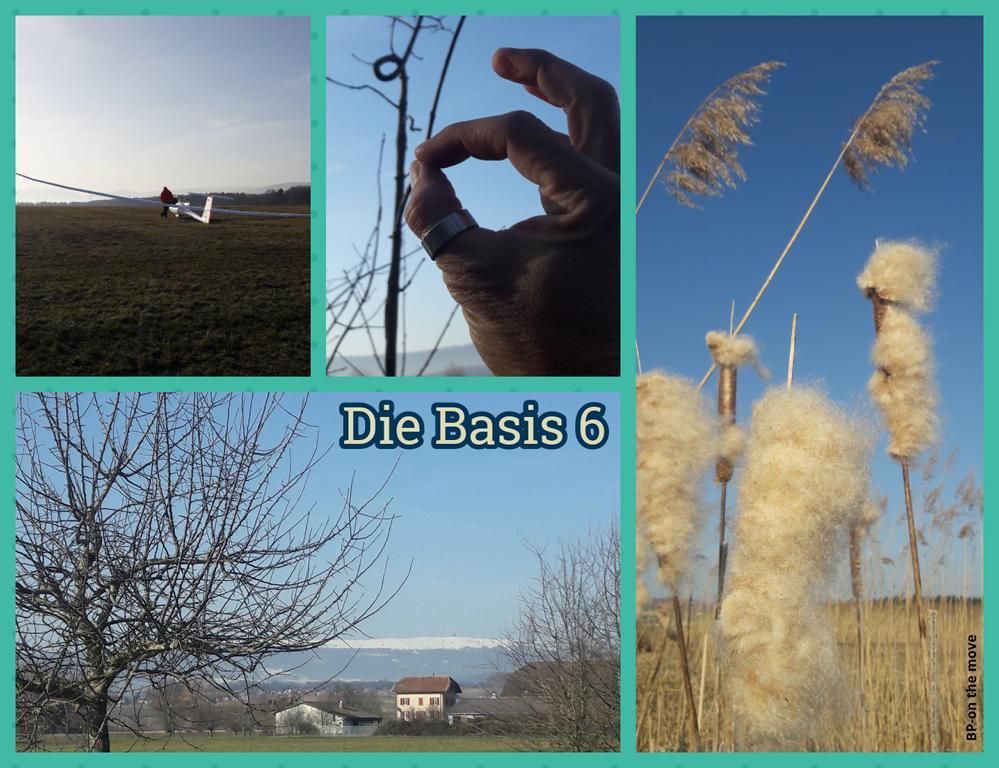 Die Basis 6