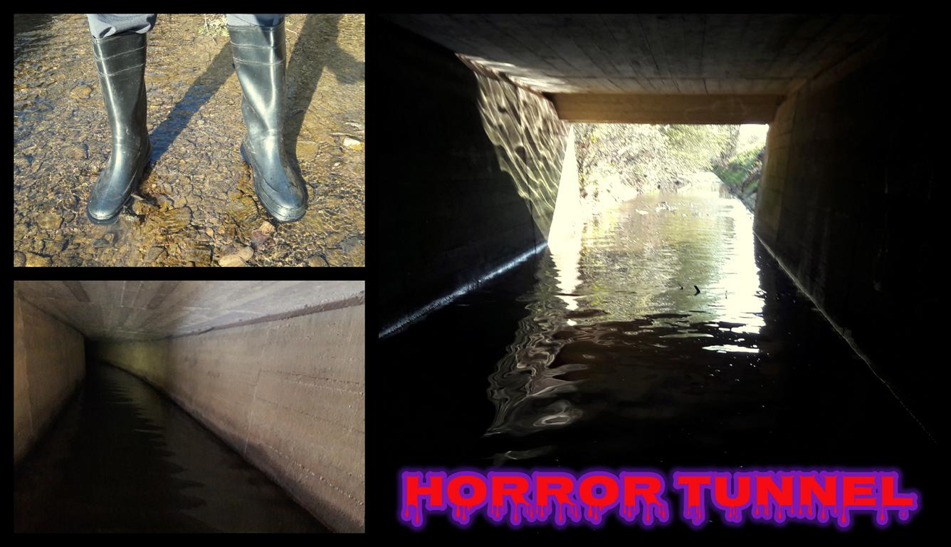 Horror Tunnel