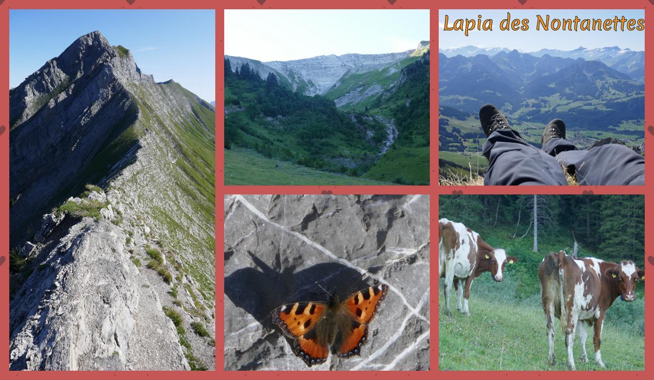 Lapia-des-Nontanettes