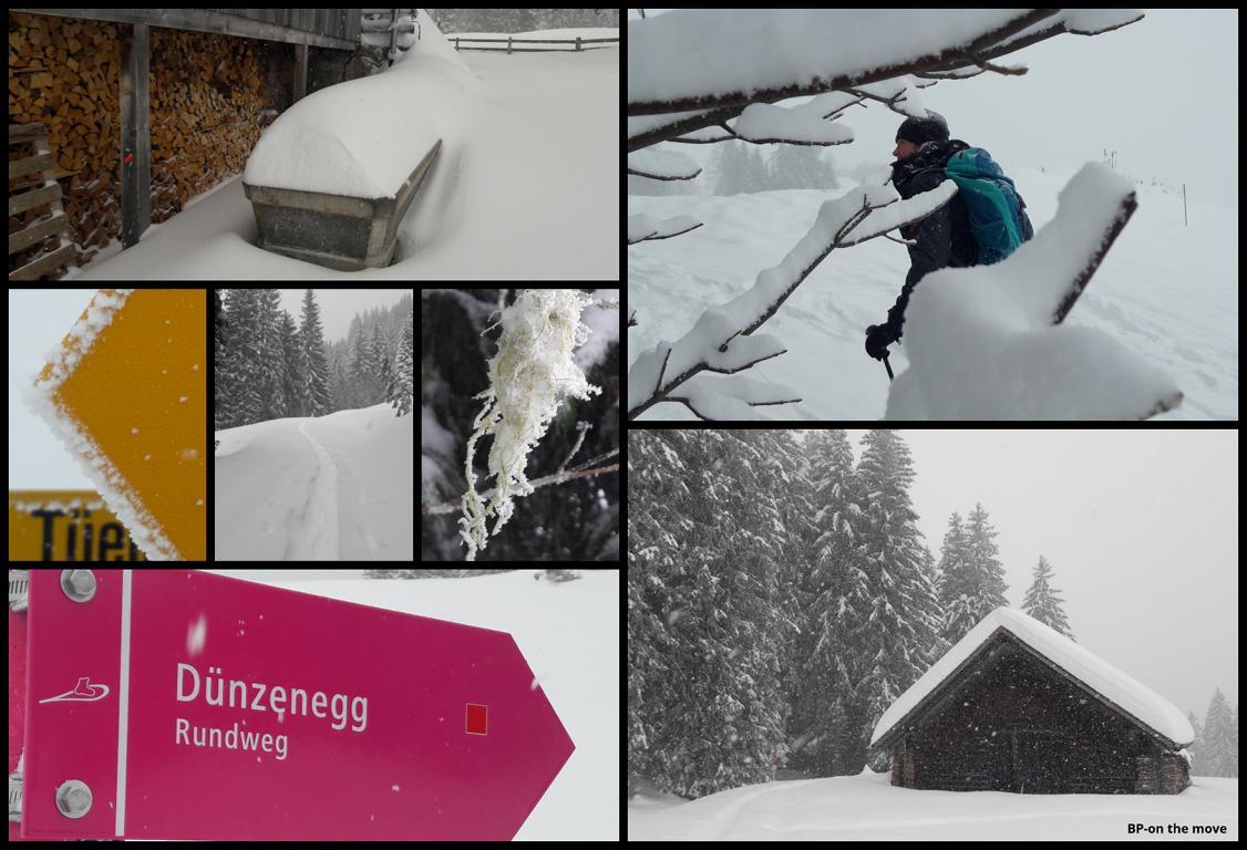 PSST Dünzenegg-Trail