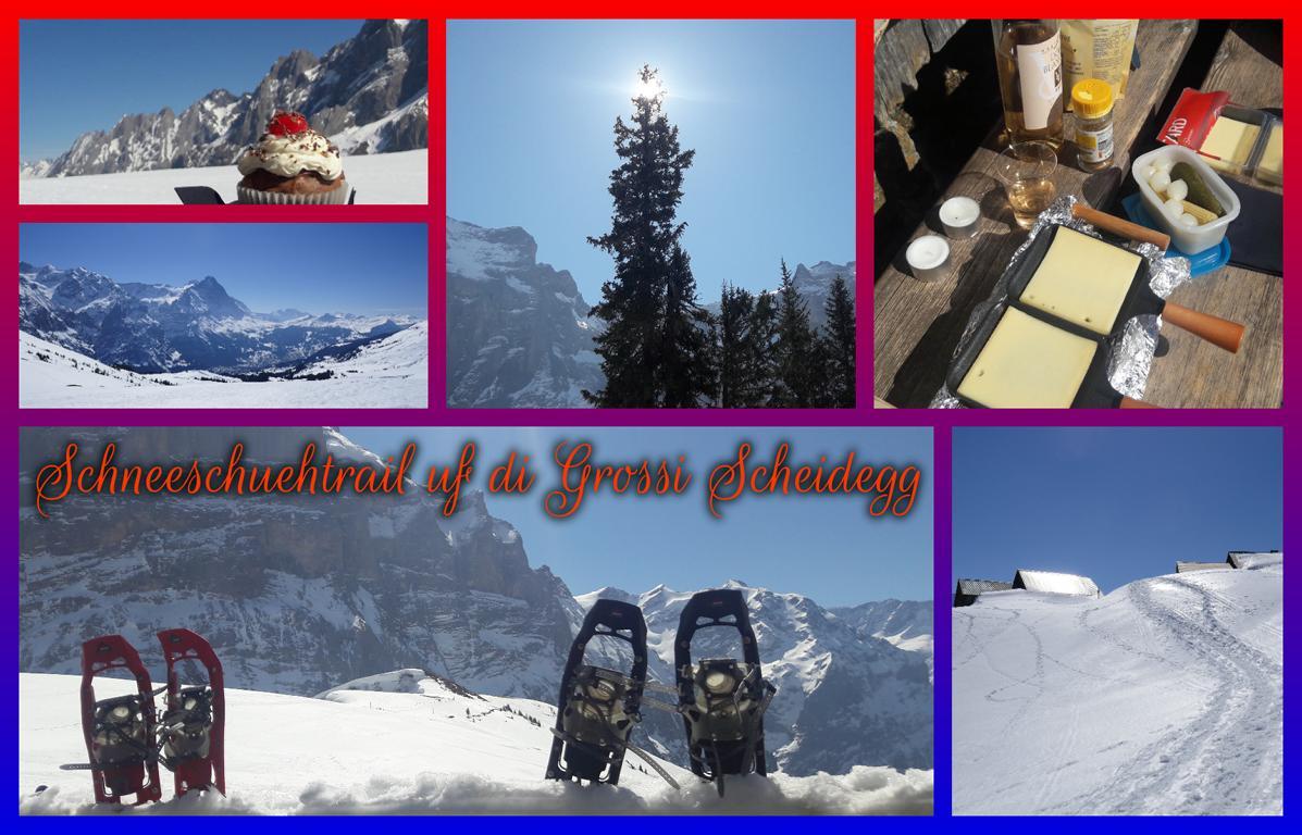 Schneeschuehtrail uf di Grossi Scheidegg