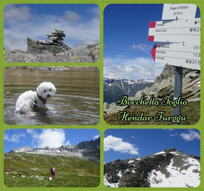 Bocchetta-Foglia_Hendar-Furggu