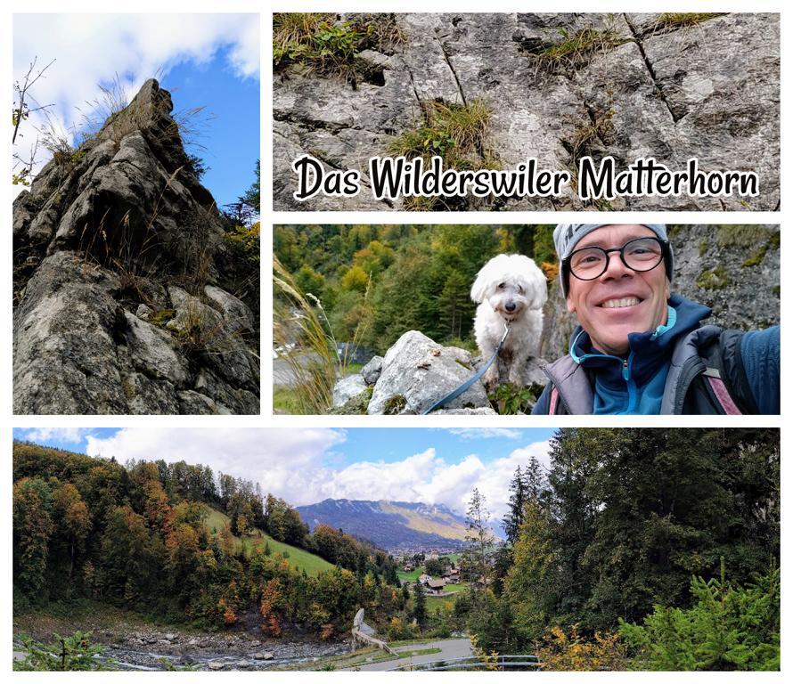 Das-Wilderswiler-Matterhorn