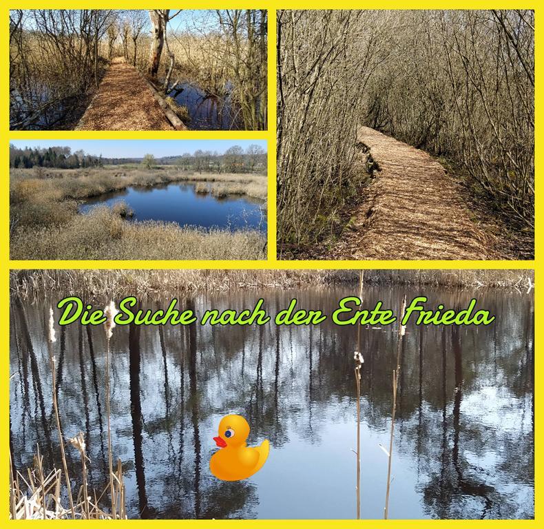 Die-Suche-nach-der-Ente-Frieda