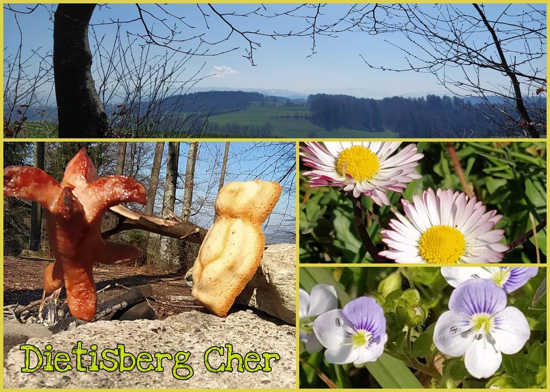 Dietisberg-Cher