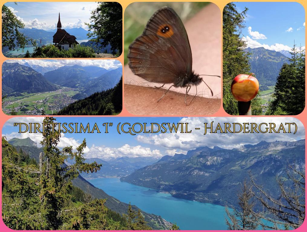 Diretissima-I-Goldswil-Hardergrat