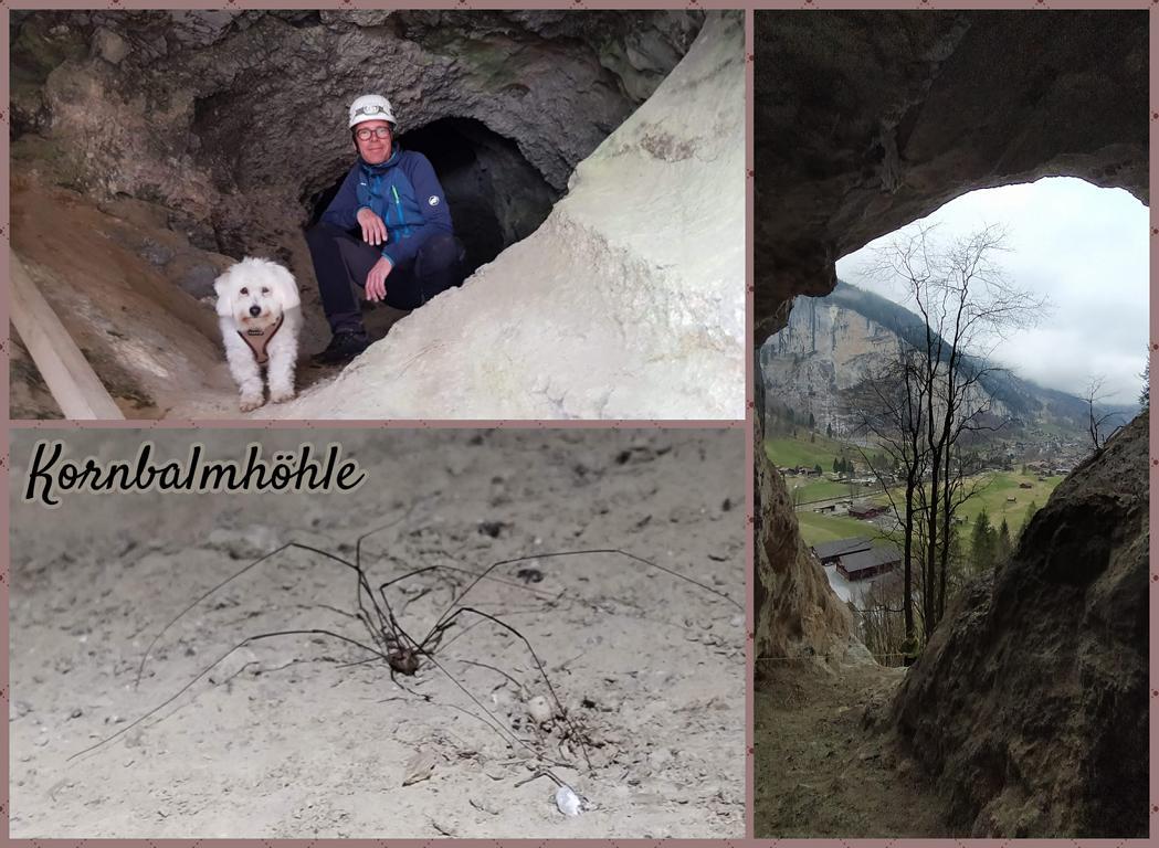 Kornbalmhöhle