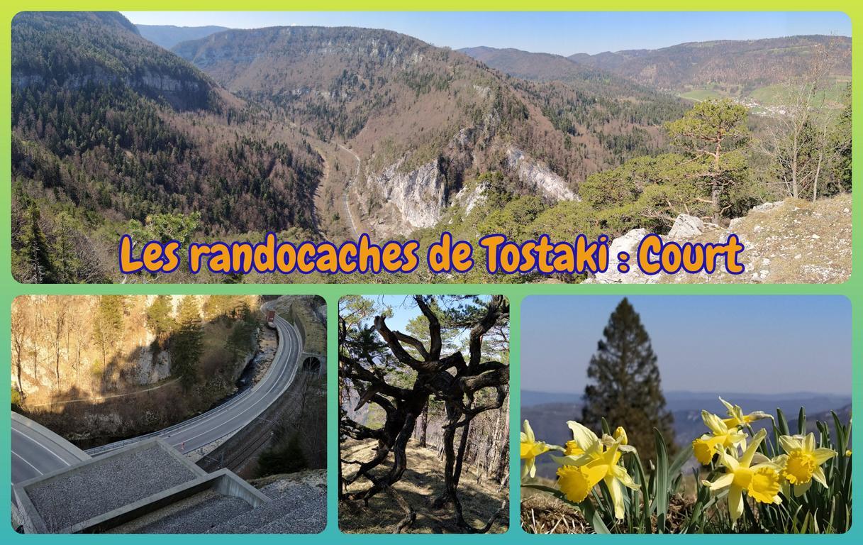 Les-randocaches-de-Tostaki-_-Court