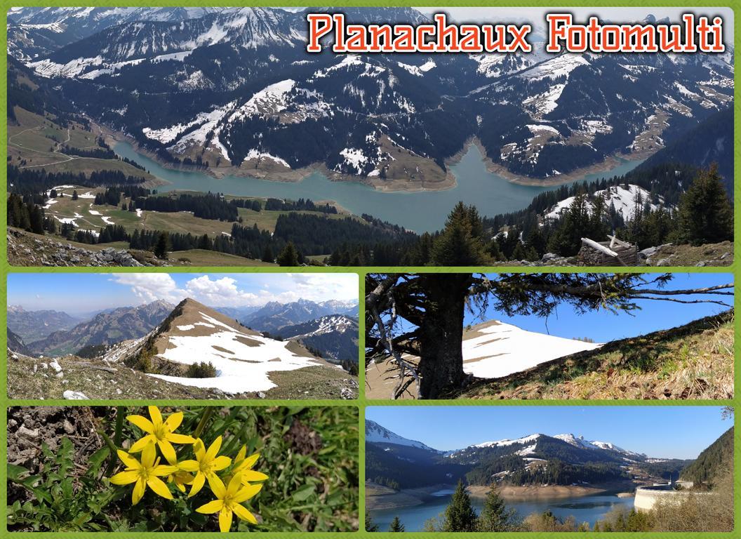 Planachaux-Fotomulti