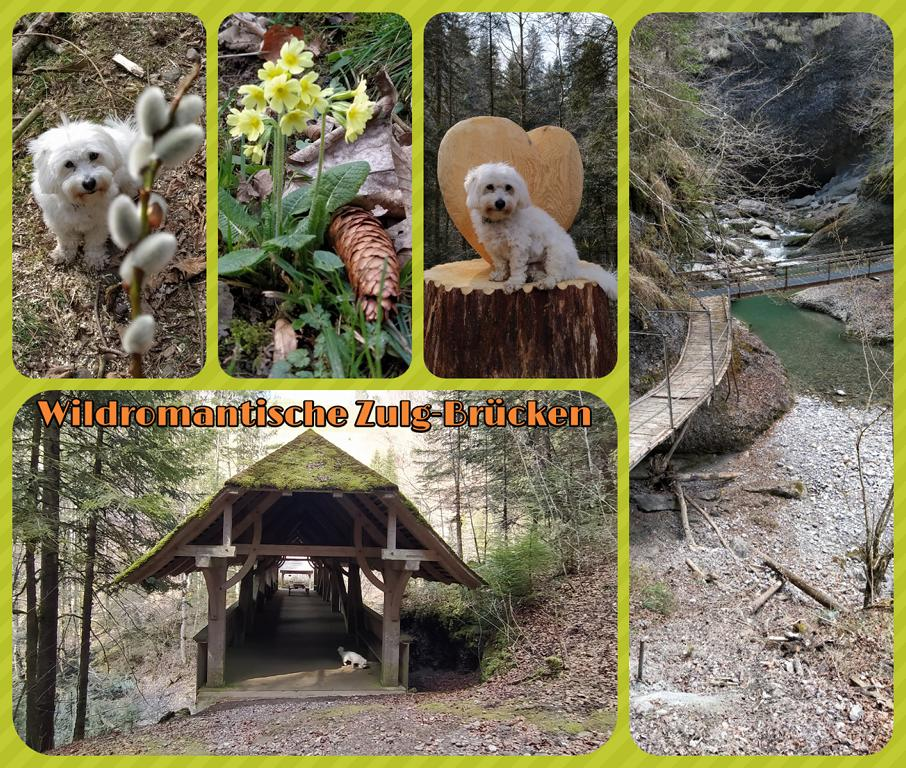 Wildromantische-Zulg-Brücken