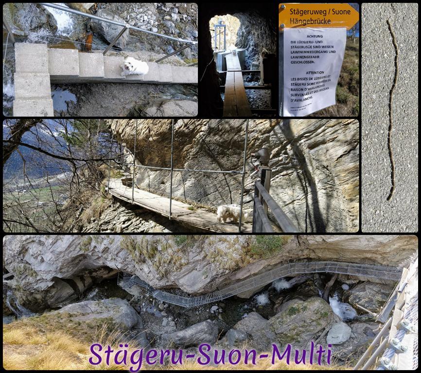 Staegeru-Suon-Multi