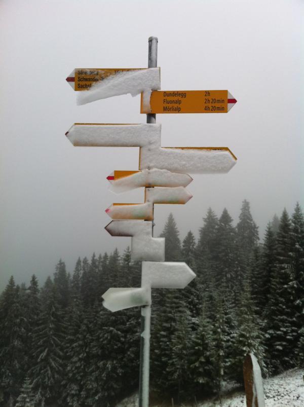 Schneewegweiser