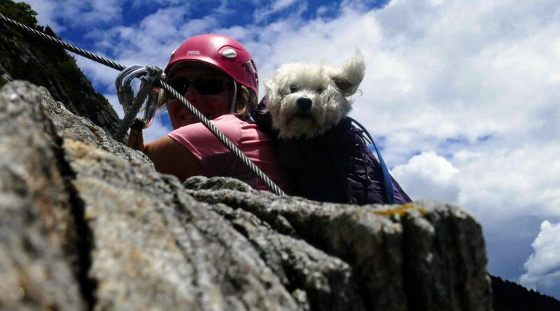 Colin auf dem Klettersteig «Tre Signori»